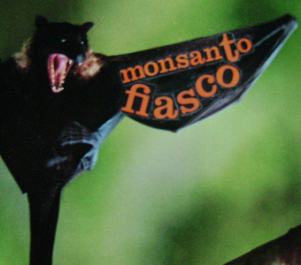 Monsanto-fiasco.jpg