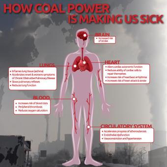 HEAL-coalreport.jpg