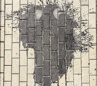 Africa-Poland-sm.jpg