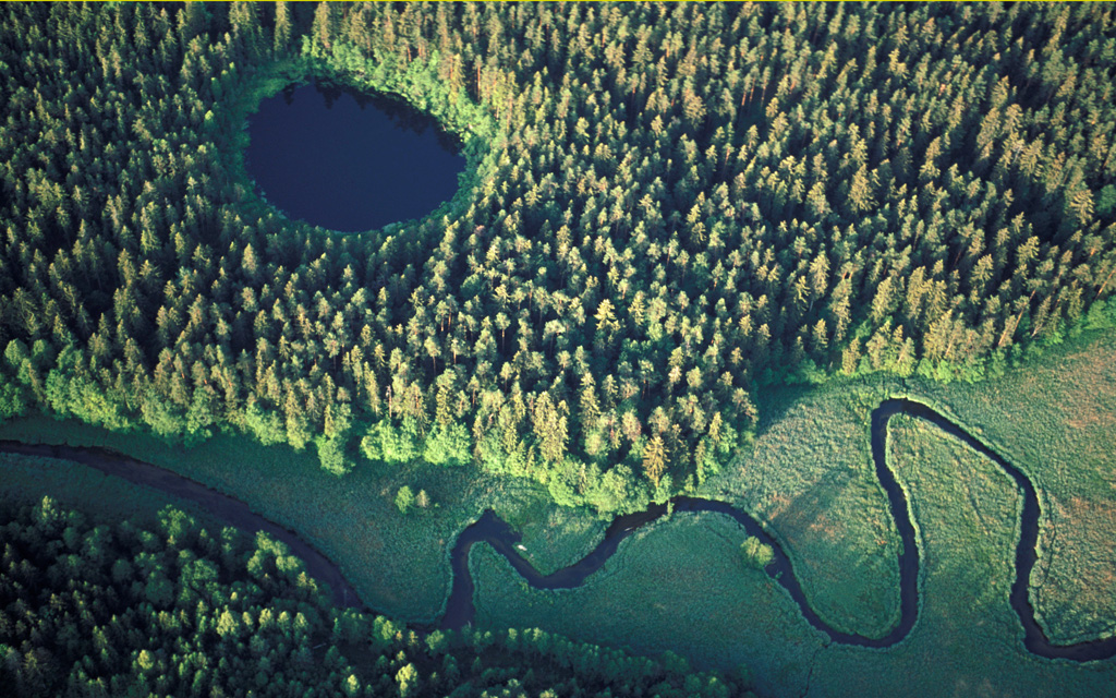 An aerial shot showing a river winding through green forrest and meadows.
