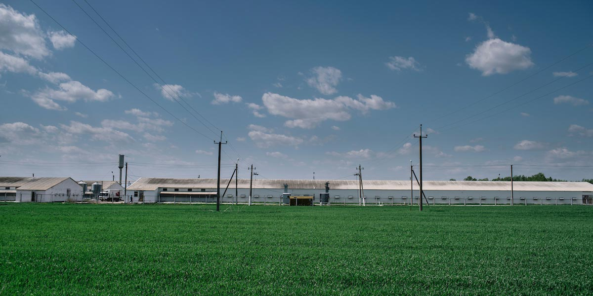 A green field and a factory in the mid-distance.