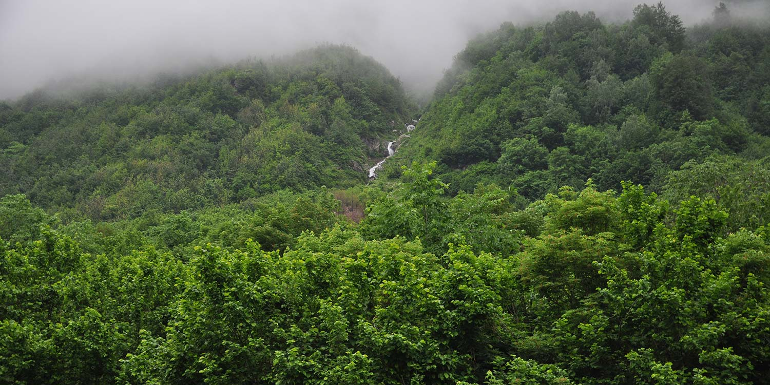A river is hardly visible in between lush greenery, running down a cravesse between two hills.