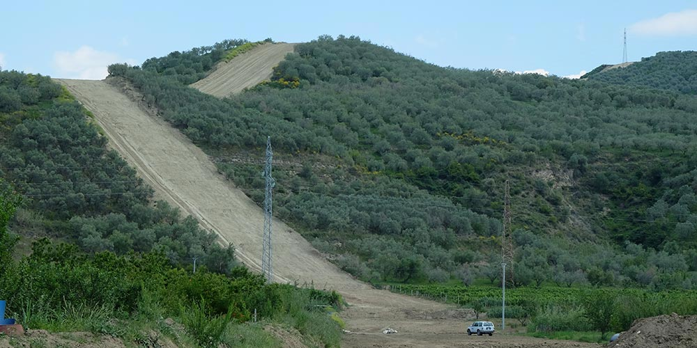 A hill with olive trees and a wide swath where the trees have been cut.